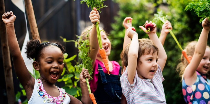 Live Discussion on Picky Eating – Food and Fun Beyond the Plate  class image